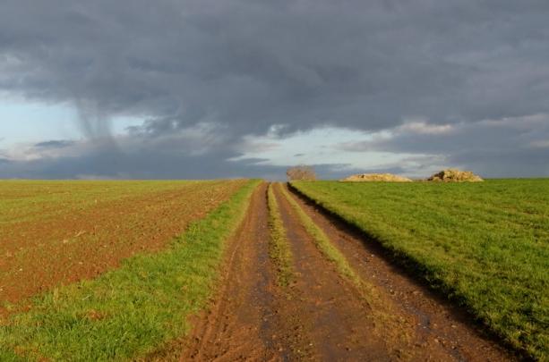 ThurySalen_9_12-11-2012_30_DxO