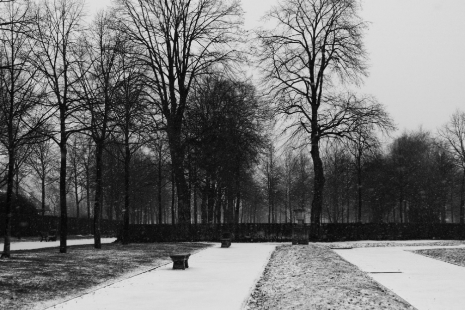Il neige (unpeu)