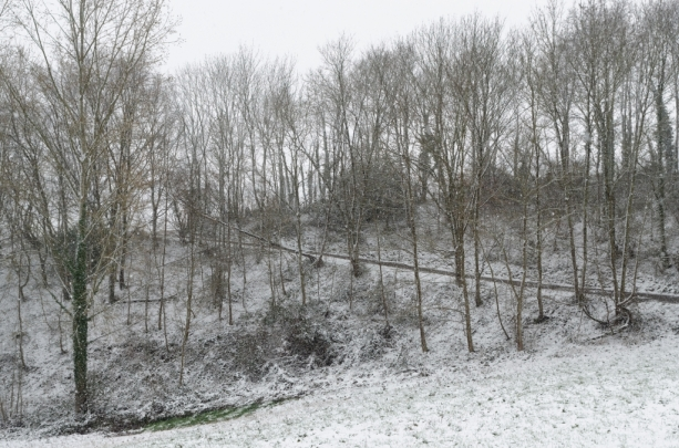 ThurySalen_013