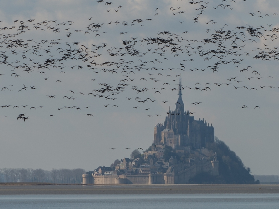Mt_St_Michel_1_049