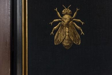 abeille_2_bis