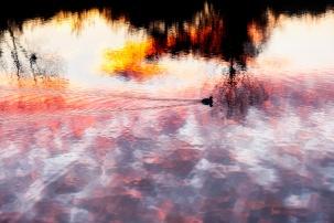 lever de soleil _DSCF8393