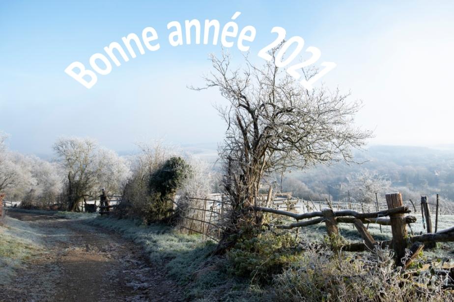Ballade du premier janvier – Bonne Année2021